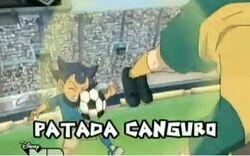 Canguro2