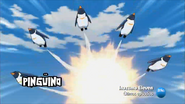 Pingüino Emperador Nº2 (8)