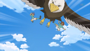 Remate del Águila 9