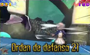 Orden de defensa 21 6