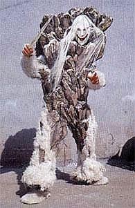 Snow Banbara