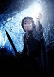 Frodo RotK 2
