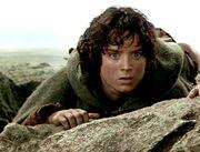 Frodo worried 3