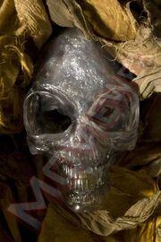 Indy-crystal-skull