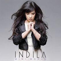 Indila-MiniWorldCover-1-