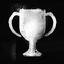 Trophy EnjoyYourPower