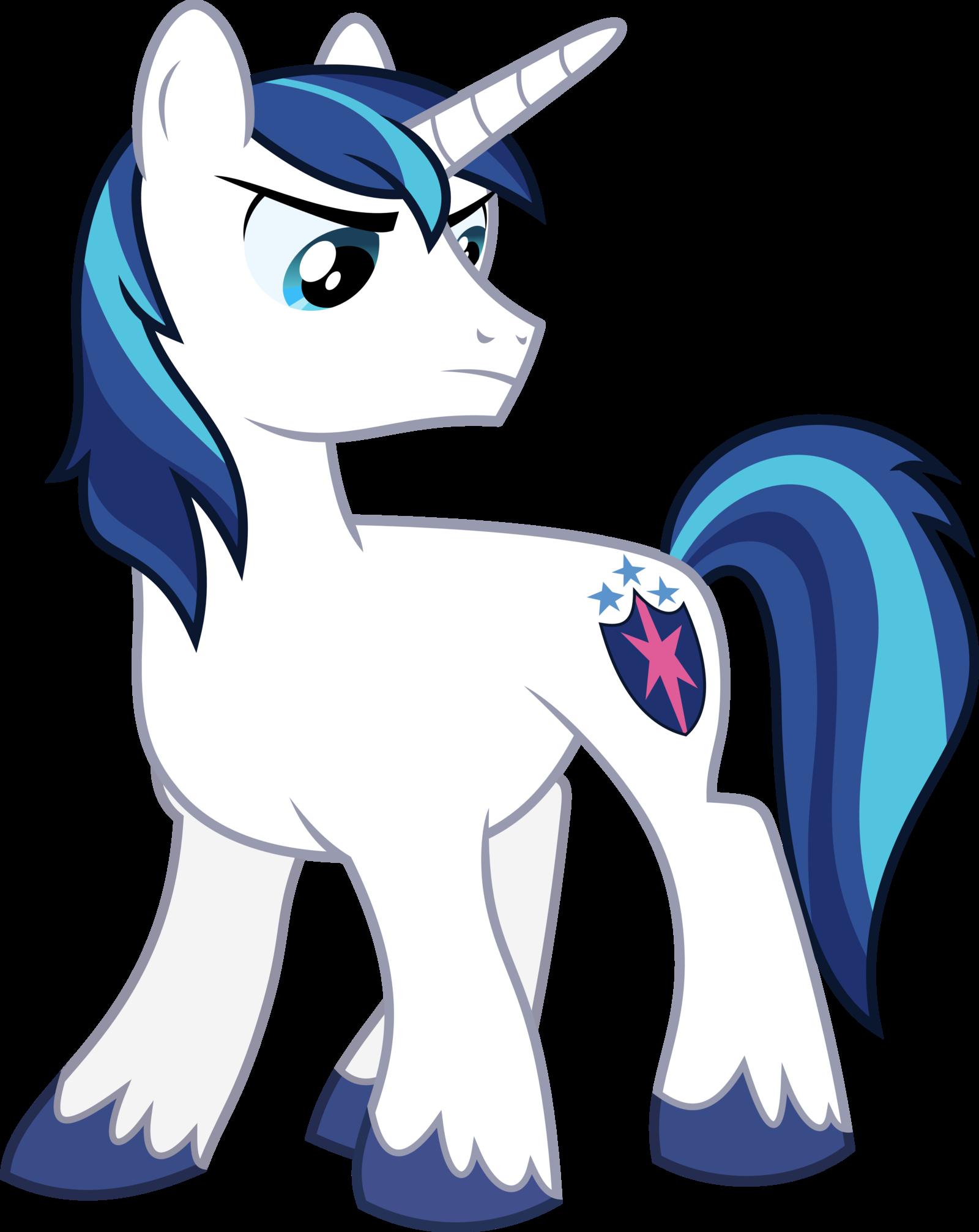 shining armor my little pony infinite loops wiki fandom