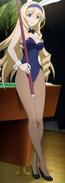 Cecilia Bunny suit anime