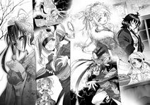 IS light novel 12 News years harem