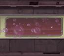 Пузырьковый вагон