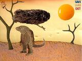 Monty the Komodo dragon