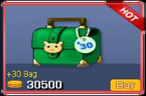 30 Bag