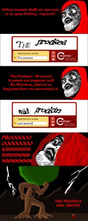 Prookea