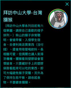 拜訪中山大學-台灣獼猴