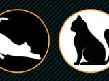 Mission:黑白貓