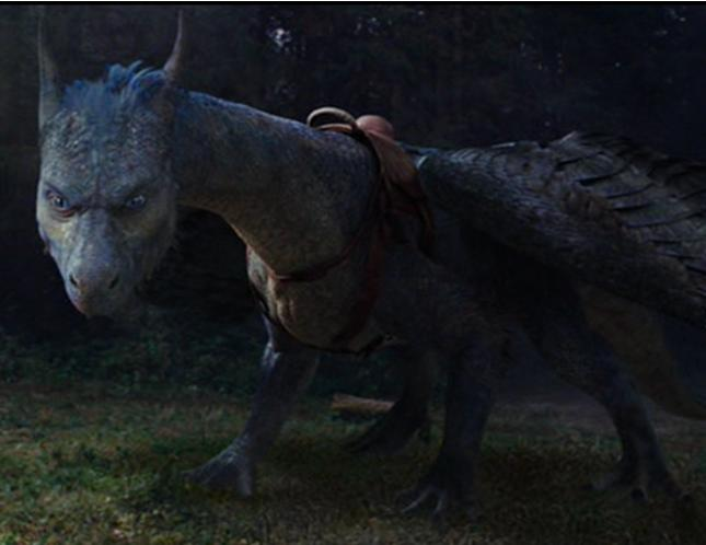 Dragon Saddle Inheriwiki Fandom