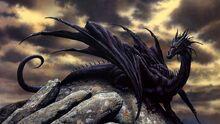 Ws Black Dragon 852x480