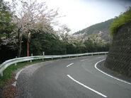Yabitsu 30