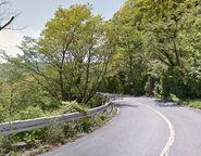 Descending Tsubaki Line