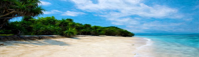 File:Banner---tropical-coast3.jpg