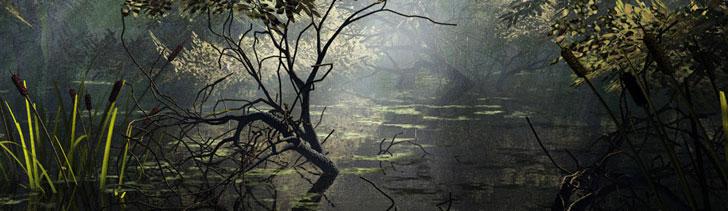 Banner---swamp