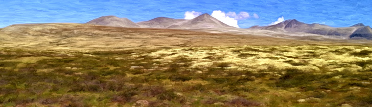 Banner---mountainplains3