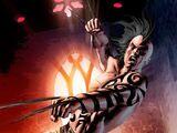 Daken (Teen Titans vs X-Men 2)