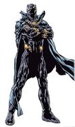 Black20panther what are your favorite marvel heroesvillains-s350x593-60028-580