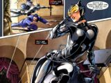 Catwoman (Mk Vs Injustice)