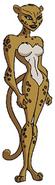 Cheetahdctas