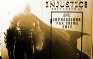InjusticeDSN