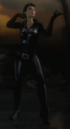 Selina Kyle Catwoman in Archives