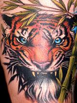 Tigersa