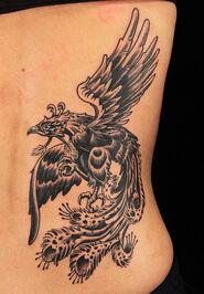 Chris phoenix
