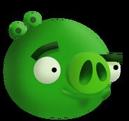Свин-миньон1