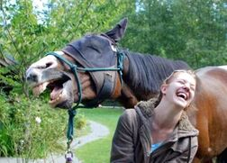 Girl-and-horse-laughing
