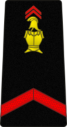 Bspp02