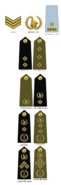 Zimbabwe Republic Police (2019-Present)