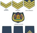 Lesotho Mounted Police Service