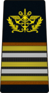 Sca06