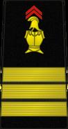 Bspp15