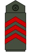Volsce-lieutenant