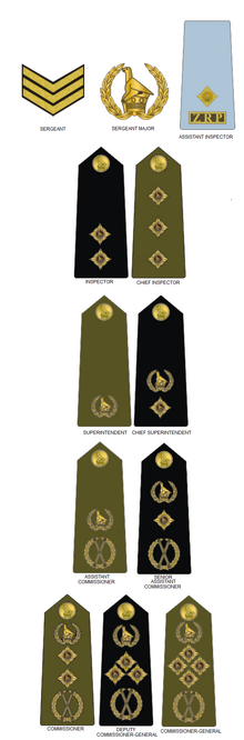 Zimbabwe Republic Police (2008-Present)
