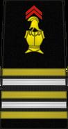 Bspp17