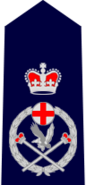 NSWPol-deputycommissioner
