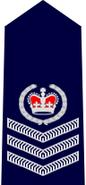NSWPol-sr sergeant