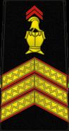 Bspp08