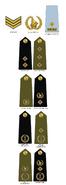 Zimbabwe Republic Police (1990-2008)
