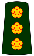 Sff-01