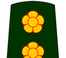 Special Frontier Force (India)